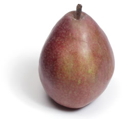 Red Anjou Pear